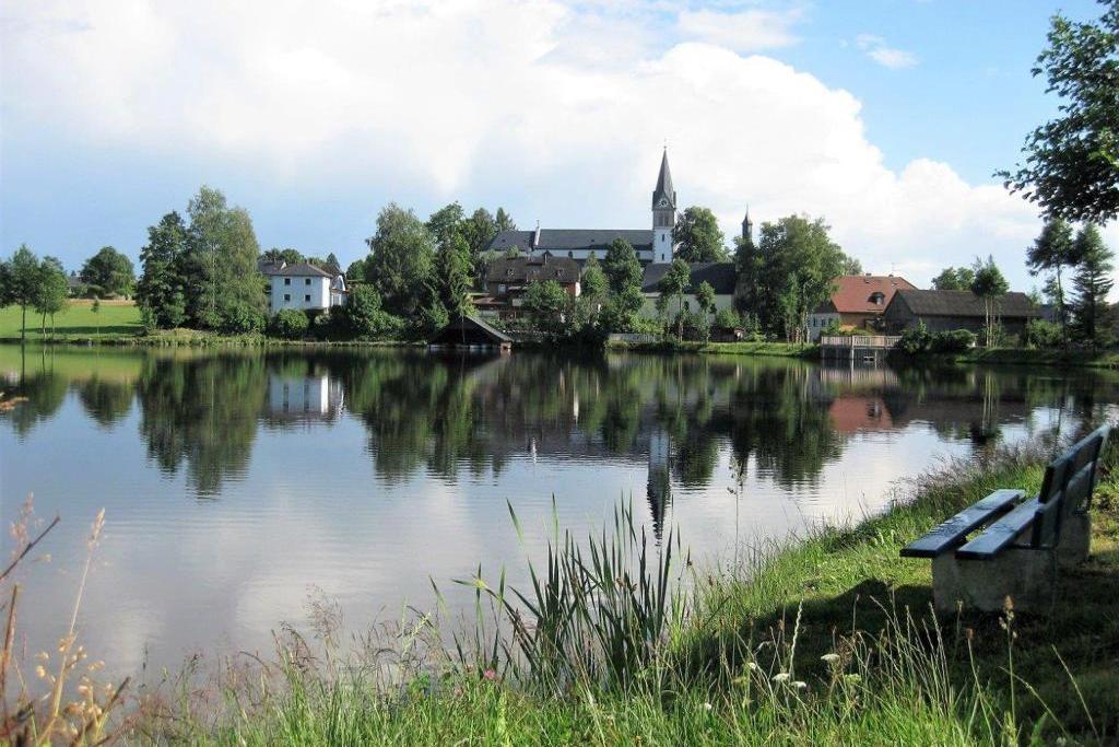 Kräuterdorf Nagel - Wildkräuterwanderung um den Nageler See und zum Bibergebiet