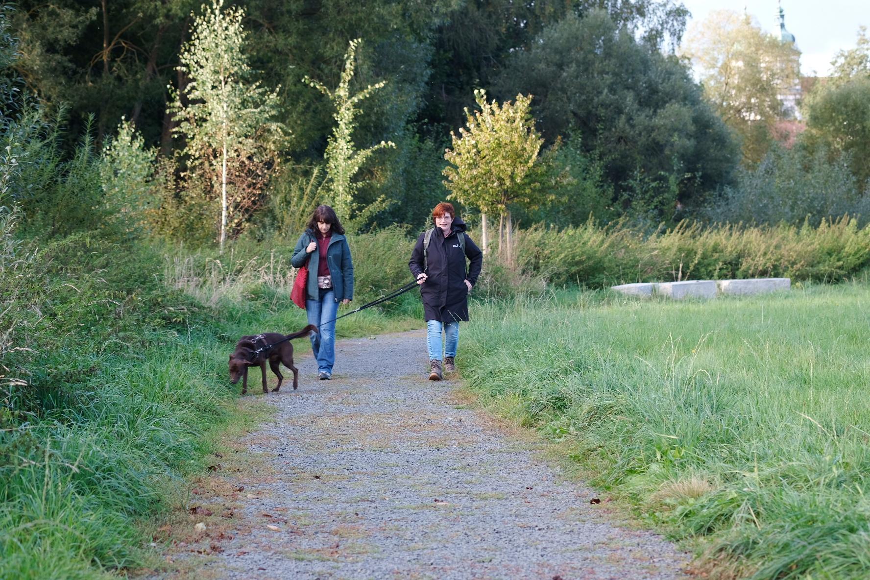 Frauen und ein Hund gehen auf einem Weg